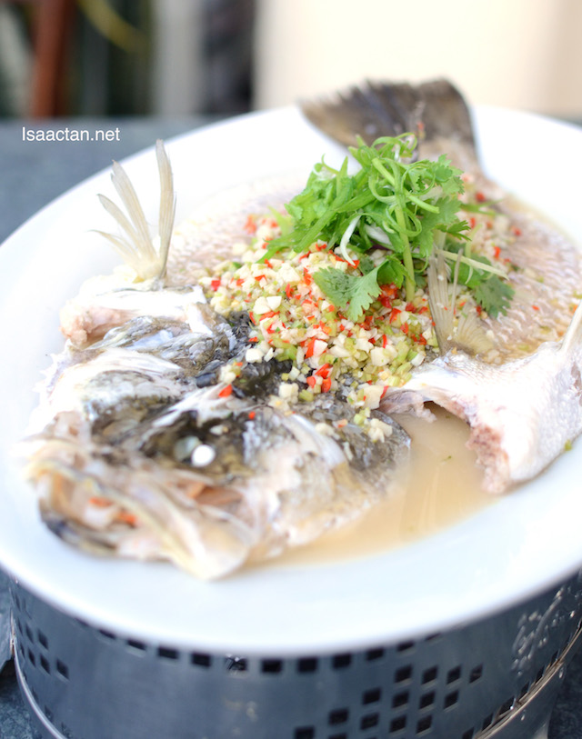 Steamed Sea Bass (Siakap) Thai Style