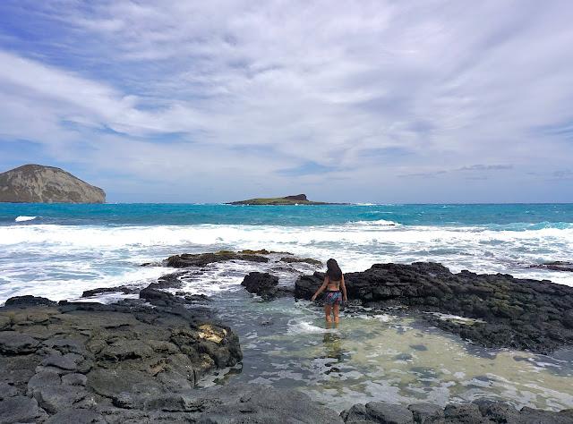 Makapu'u Tide Pool Oahu Hawaii