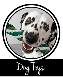 Button to DIY dog toy page on Dalmatian DIY