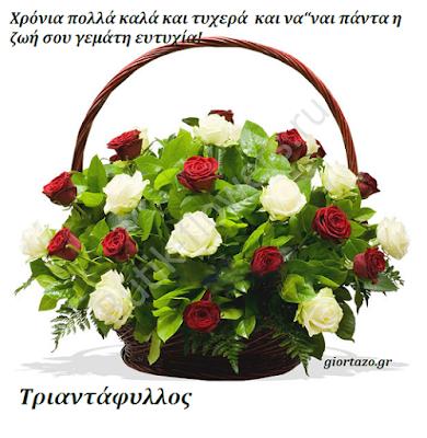 Τριαντάφυλλος giortazo