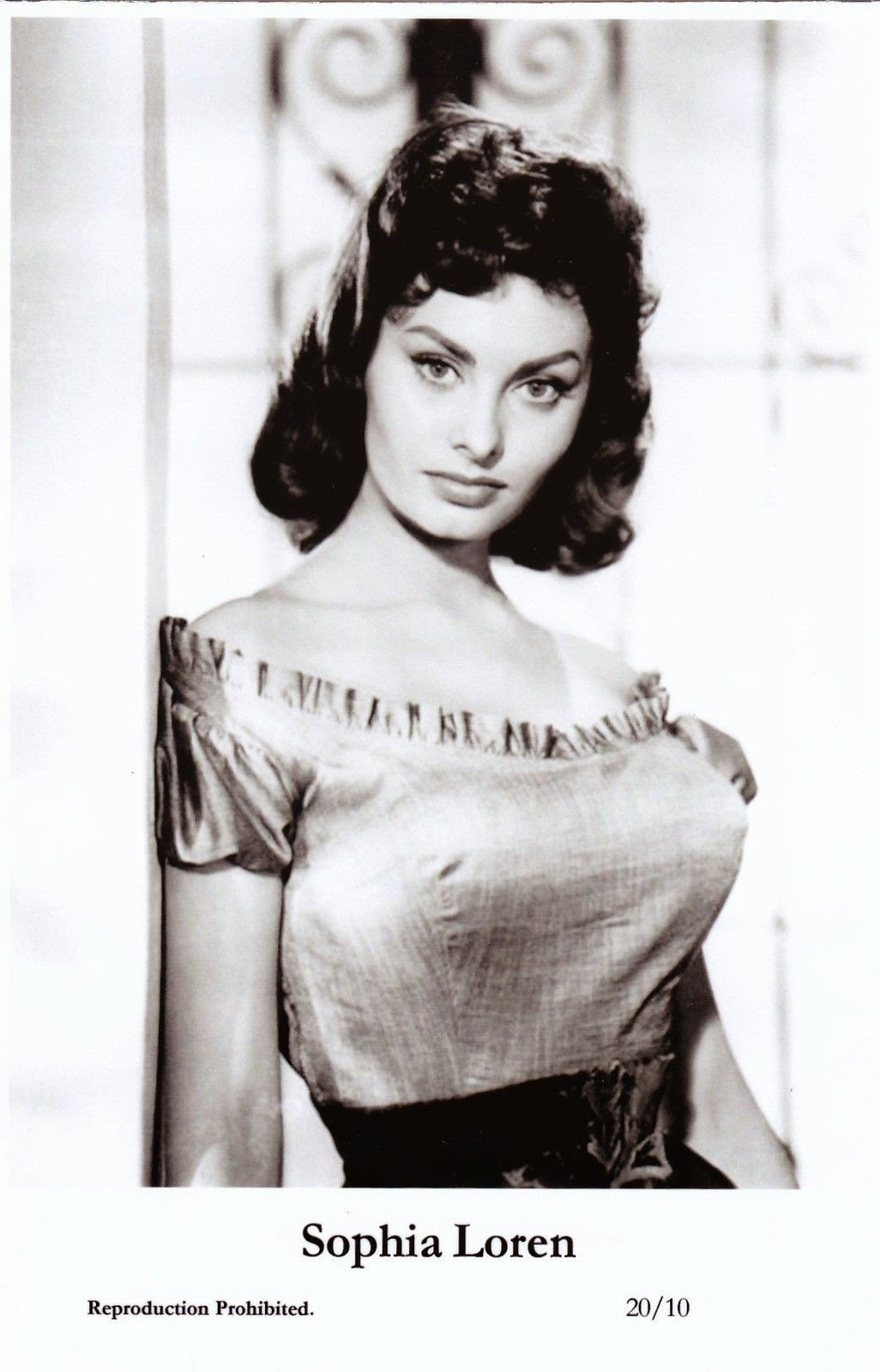 Portrait of Italian Actress Sophia Loren