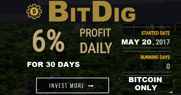 Bitcoin FORUM: BITDIG investment review