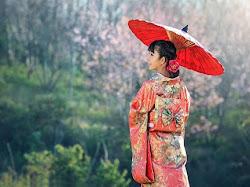 15+ Hal yang Tidak Boleh Kamu Lakukan Saat Liburan ke Jepang
