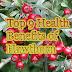 Top 9 Health Benefits of Hawthorn