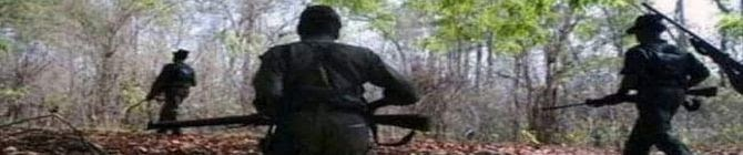 Eight People, Allegedly Kidnapped By Maoists In Chhattisgarh, Released: Police