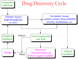 Drugs find their way into therapeutics mainly by one of the following routes: serendipity, random screening,