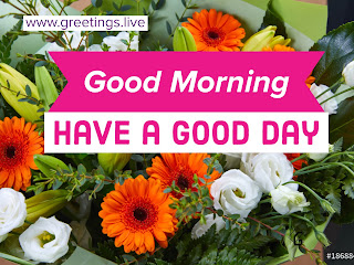 Good-Morning-flowers-pictures-greetings-live