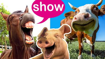 video de animais e os sons que eles fazem