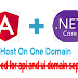 Configure and Deploy dot Net Core API with Angular 8 front end Together | Host on same domain