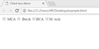 HTML-checkbox-example-output
