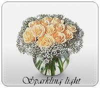 sparkling light