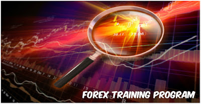 Get the right forex training to trade