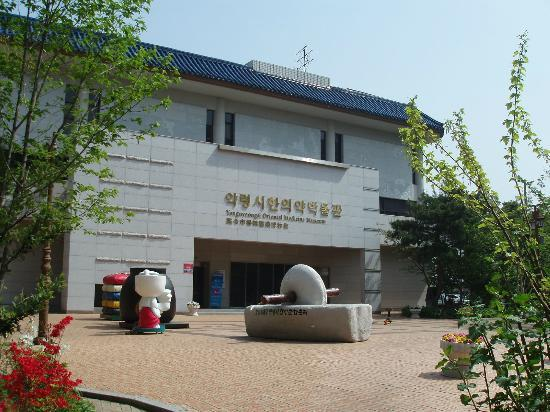 Things to Do in Daegu Museum of Oriental Medicine