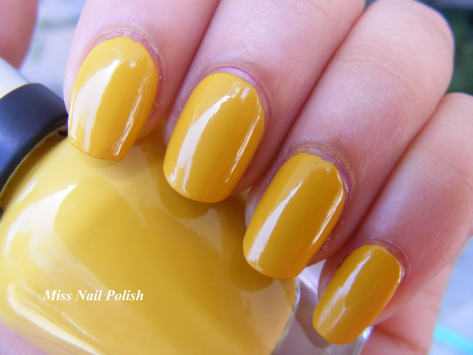 Miss Nail Polish Sally Hansen Designer Collection Spring 2013 Butterscotch And Soy Latte