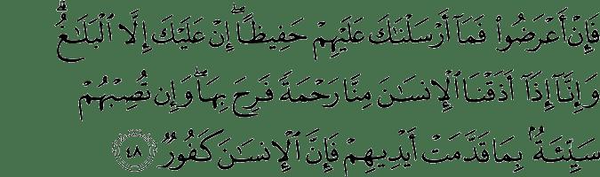 Surat Asy-Syura ayat 48