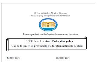 PFE : GPEC dans le secteur d'éducation public