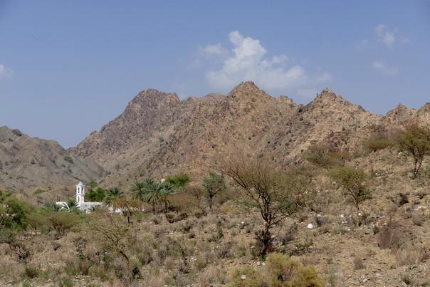 Oman, Landschaft, Berge, Moschee, Palmen