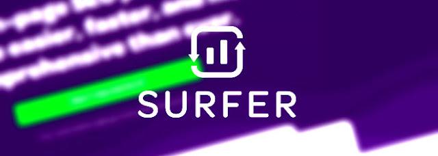 Surfer - marketingdaddies
