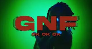Polo G - GNF (OKOKOK) Lyrics