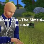Коны для «The Sims 4» разные