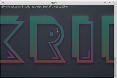 sudo apt-get install virtualbox