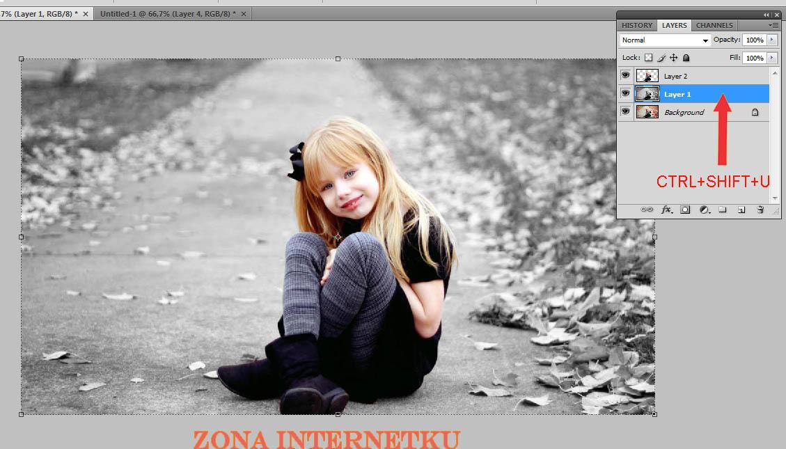 Tutorial Membuat Efek Fokus Dual Color Max - Zona Internetku