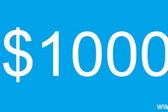 Meraup $1000 Dari Internet Itu Ternyata Mudah !!!