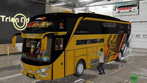 Livery Bussid STJ Ridley SHD Original