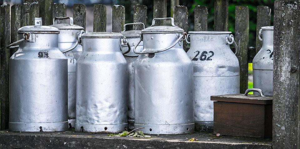 Pradhan Mantri Mudra Scheme Dairy Product Business Idea West Bengal