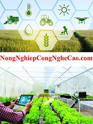 NongNghiepCongNgheCao.com