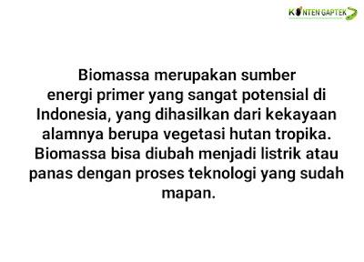 Apa Itu Energi Biomassa?