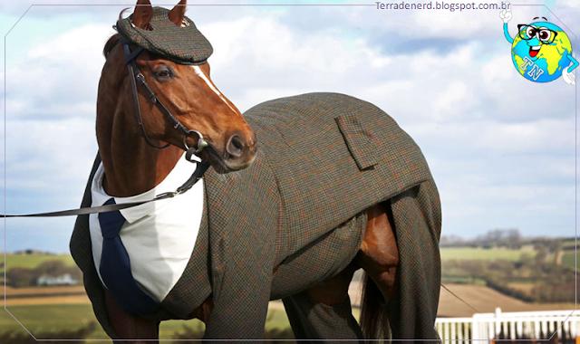 Filhotes, Cavalos, Cheltenham Festival, Terra de Nerd