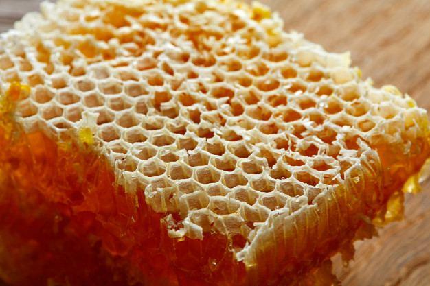 Amankah makan sarang madu lebah