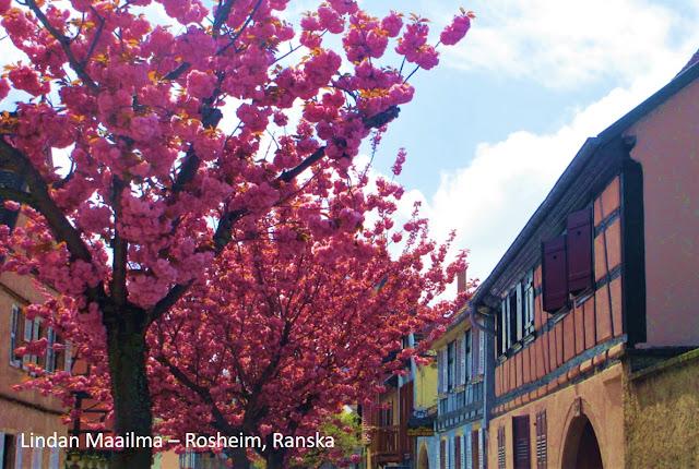 Rosheimin pikkukaupunki Ranskassa