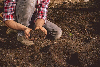 A person kneeling down in brown dirt, holding some in both hands.
