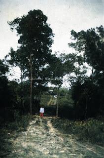 jalan menuju padang lawas