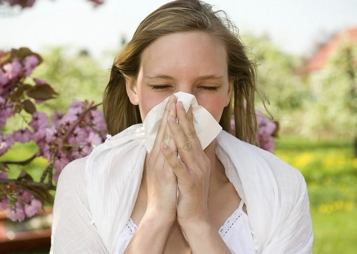 29 Remédios Caseiros Para Alergias ao Pó, Pólen, Alimentos e Picadas