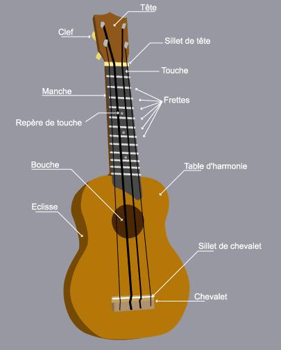 Anatomie d'un ukulélé