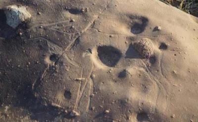 Guarda da vicino e la debole incisione di un'antilope emerge dalla roccia qui.