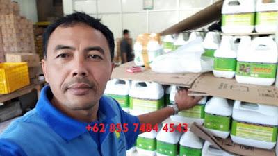 agen-nasa-di-balanipa-polowali-mandar-085232128980