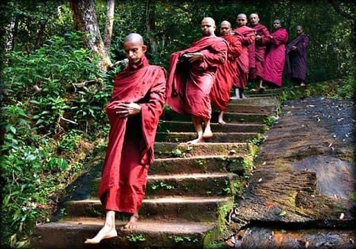 සිත් පහන් වෙන - මඩකඩ ආරණ්ය සේනාසනය 🙏 (Madakada Aranya 🙏🍃) - Your Choice Way