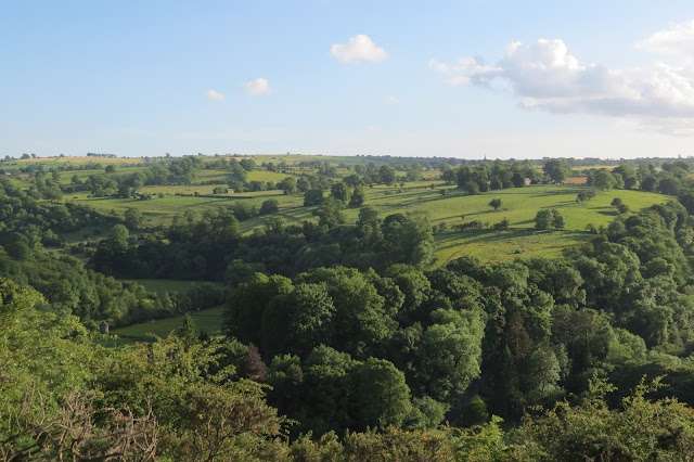 Lush farmland and trees seen above from Ecton Hill summit.