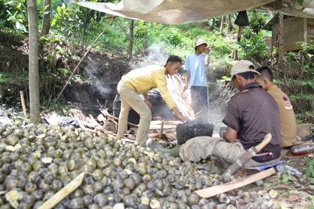 petani kolang kaling