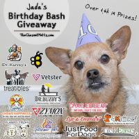 Jada's 10th Birthday Bash Giveaway