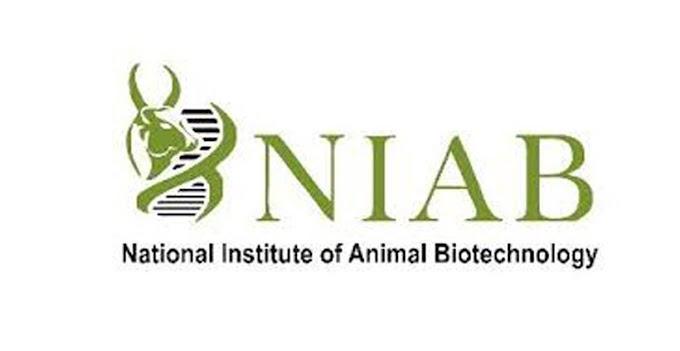 National Institute of Animal Biotechnology Recruitment 2020 Senior Scientist, Junior Scientist & Technical Officer – 8 Posts www.niab.org.in Last Date 08-12-2020
