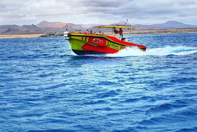 Llegar a la isla de Lobos en watertaxi