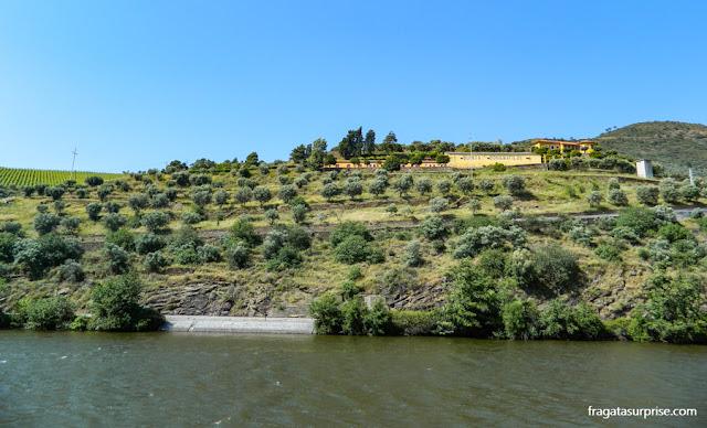 A Quinta Dona Matilde, em Bagaúste, Região do Douro, Portugal