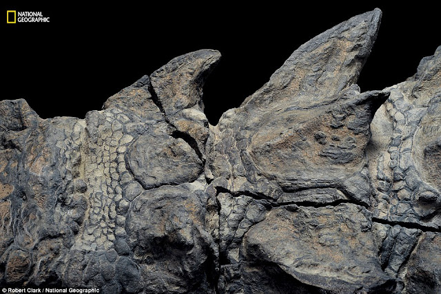 New Dinosaur Fossil So Well-Preserved it Looks Like a Statue
