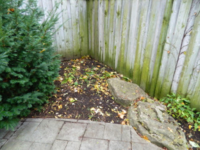 Fall Cleanup Bedford Park Backyard After by Paul Jung Gardening Services--a Toronto Gardening Company