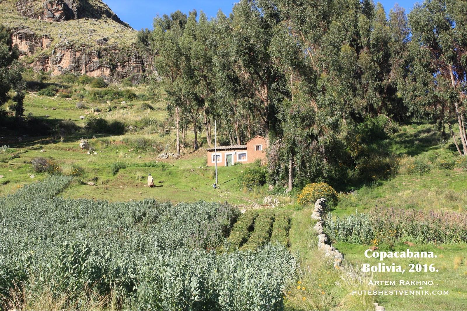 Дом и огород в Боливии